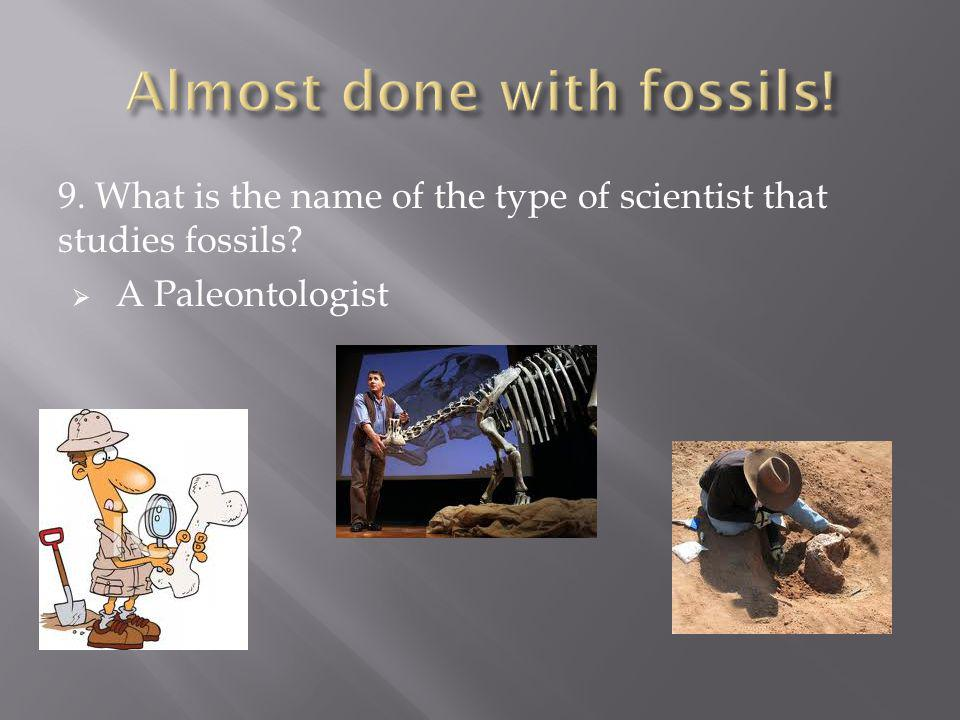 Almost done with fossils!