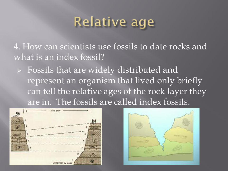 Relative age 4. How can scientists use fossils to date rocks and what is an index fossil