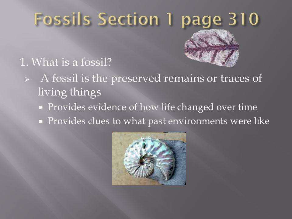 Fossils Section 1 page 310 1. What is a fossil