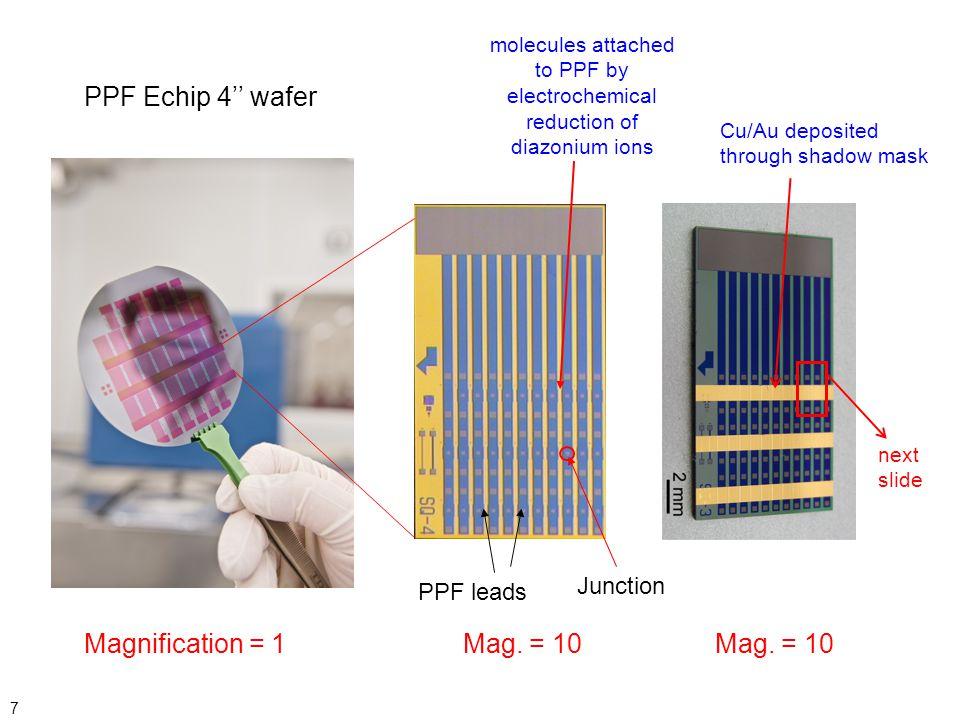 Mag. = 10 PPF Echip 4'' wafer Mag. = 10 Magnification = 1 Junction