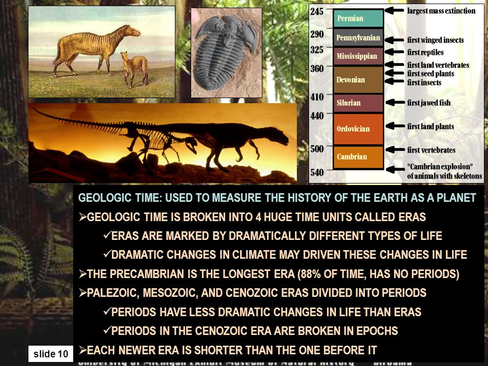 GEOLOGIC TIME: USED TO MEASURE THE HISTORY OF THE EARTH AS A PLANET