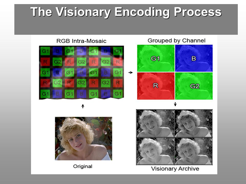 The Visionary Encoding Process