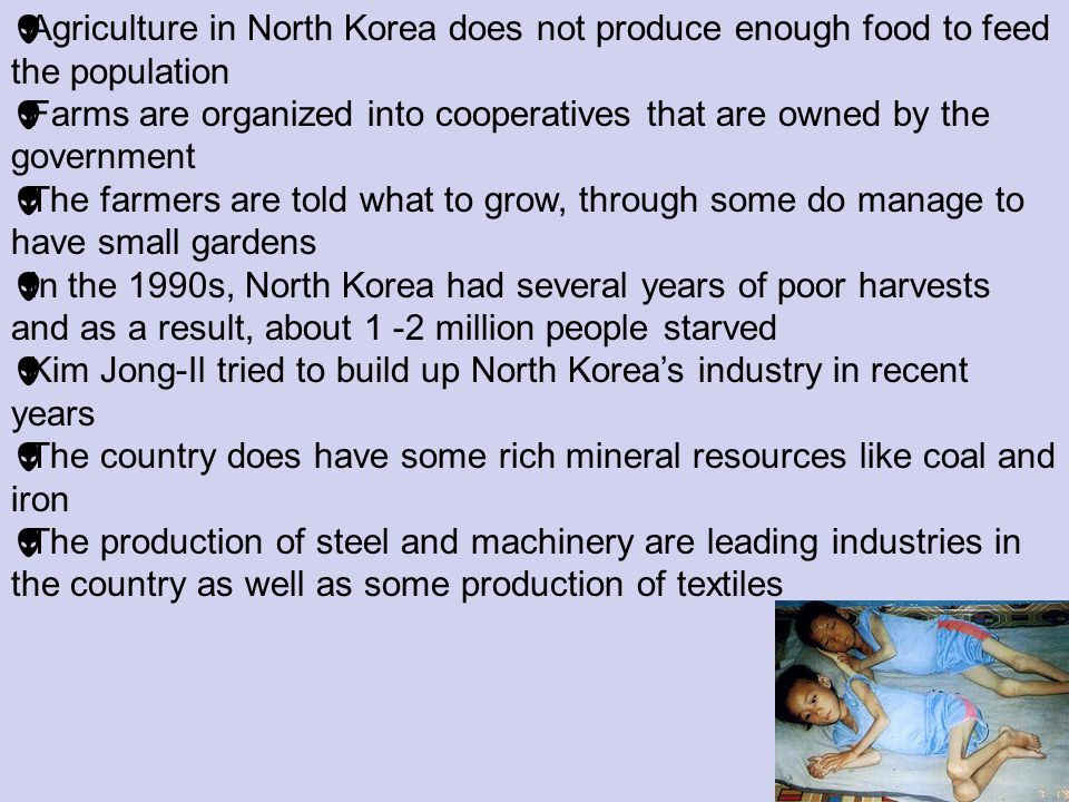 Agriculture in North Korea does not produce enough food to feed the population