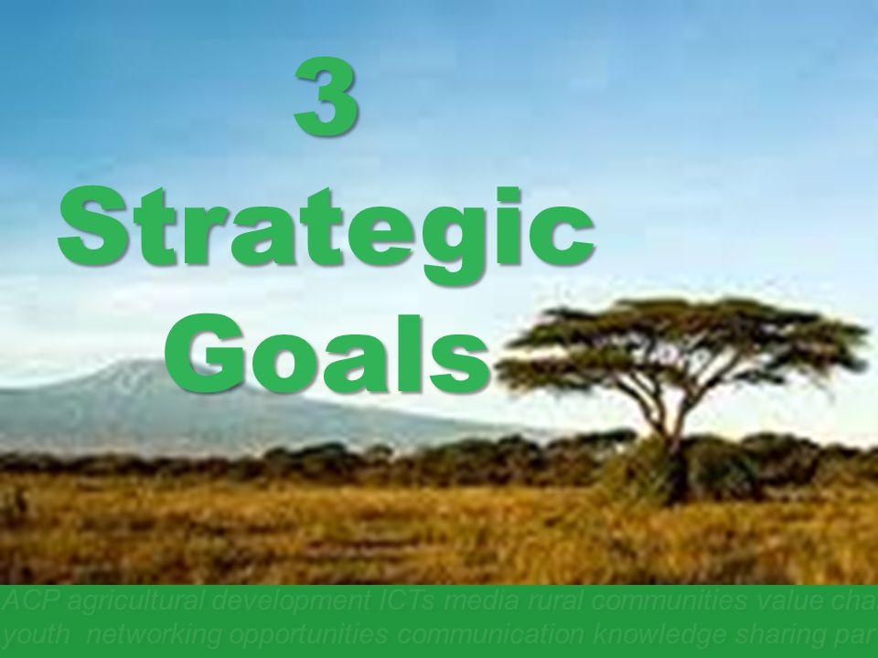 3 Strategic Goals