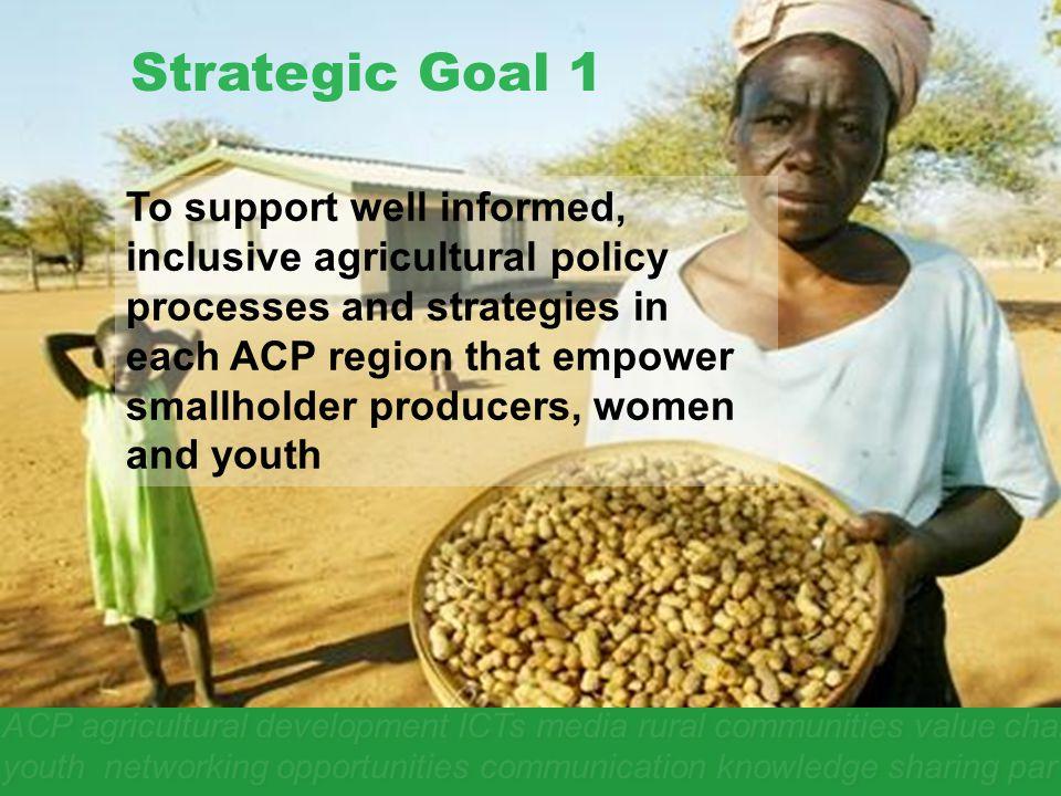 Strategic Goal 1