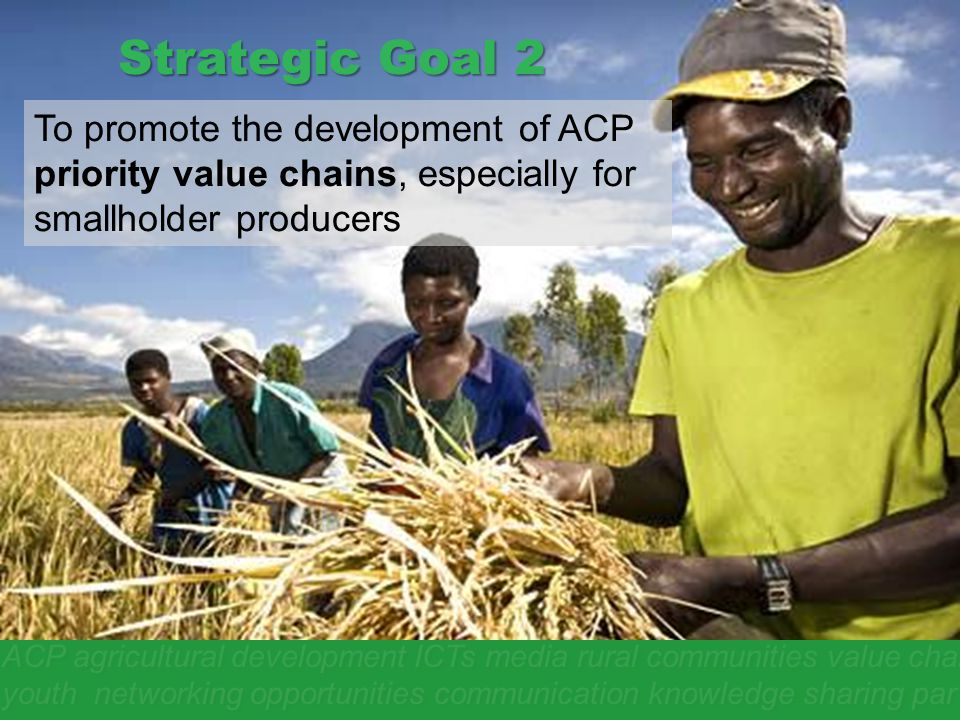 Strategic Goal 2 To promote the development of ACP priority value chains, especially for smallholder producers.