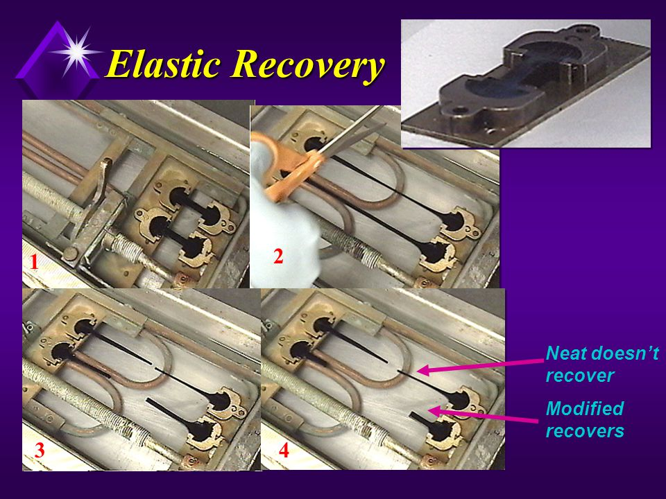Elastic Recovery 2 1 Neat doesn't recover Modified recovers 3 4