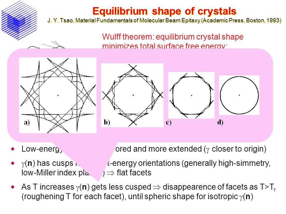 Equilibrium shape of crystals J. Y