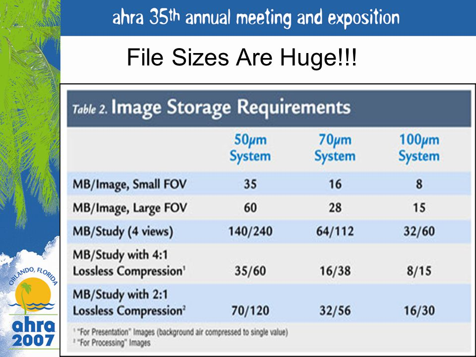 File Sizes Are Huge!!!