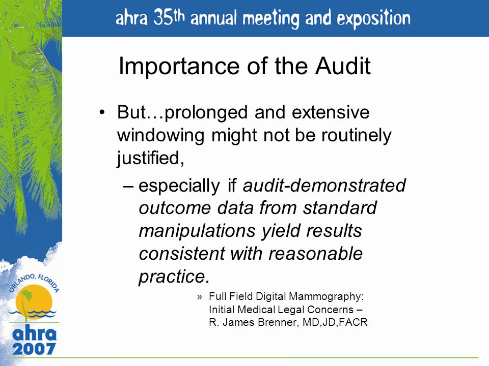 Importance of the Audit