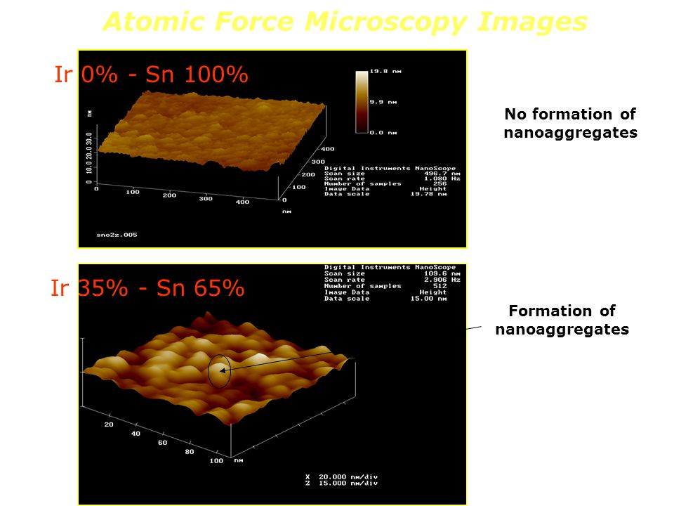 Atomic Force Microscopy Images No formation of nanoaggregates