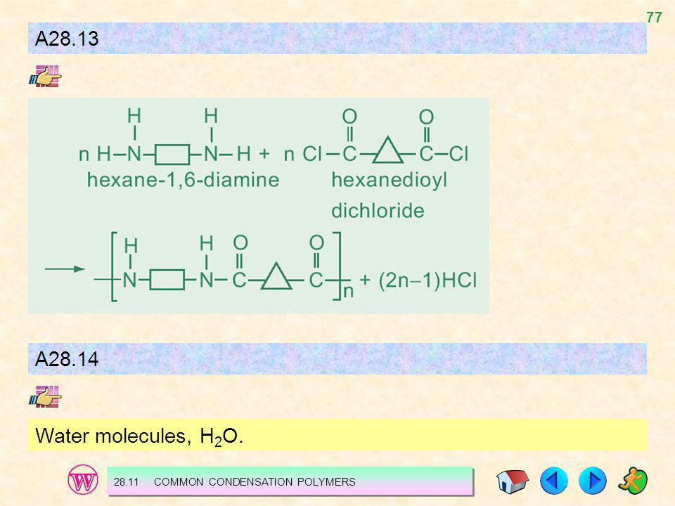 A28.13 A28.14 Water molecules, H2O. 28.11 COMMON CONDENSATION POLYMERS