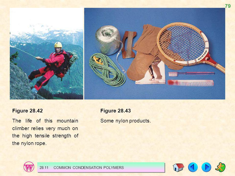 Figure 28.42 The life of this mountain climber relies very much on the high tensile strength of the nylon rope.