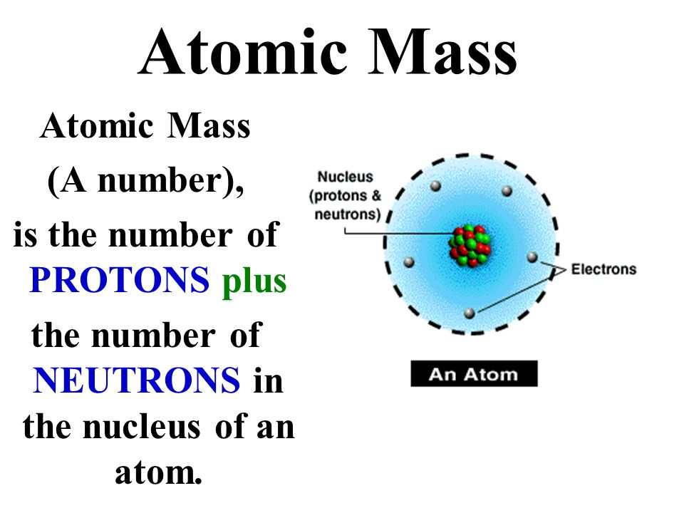 Atomic Mass Atomic Mass (A number), is the number of PROTONS plus