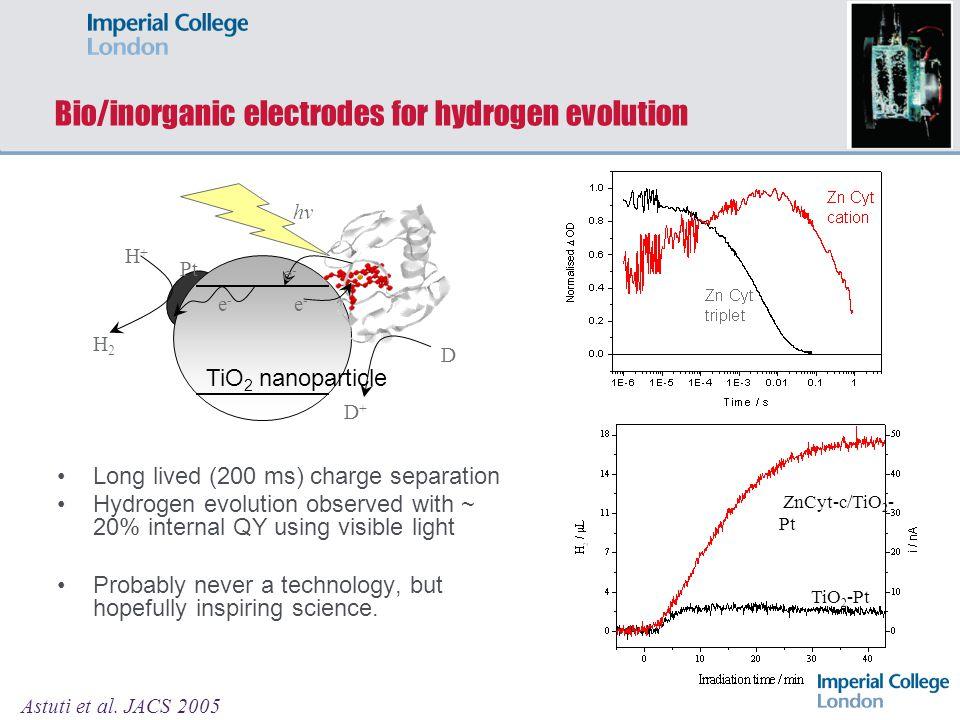 Bio/inorganic electrodes for hydrogen evolution