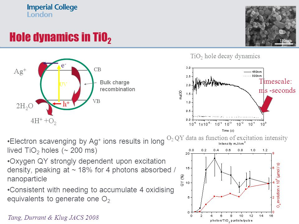 Hole dynamics in TiO2 Timescale: ms -seconds