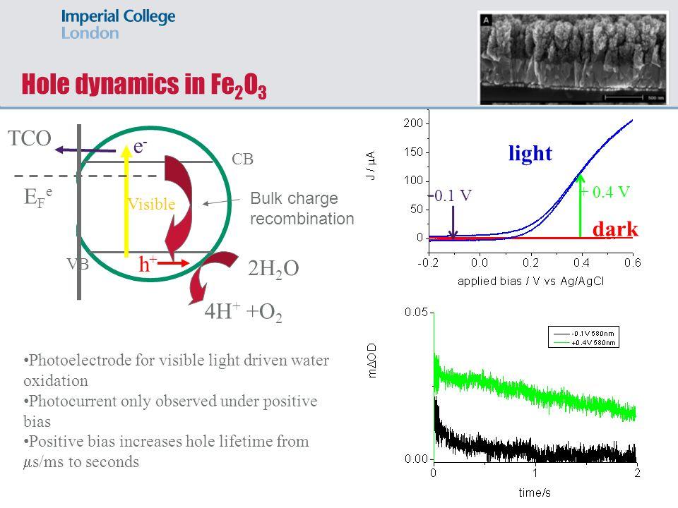 Hole dynamics in Fe2O3 TCO e- light -0.1 V EFe dark h+ 2H2O 4H+ +O2 CB