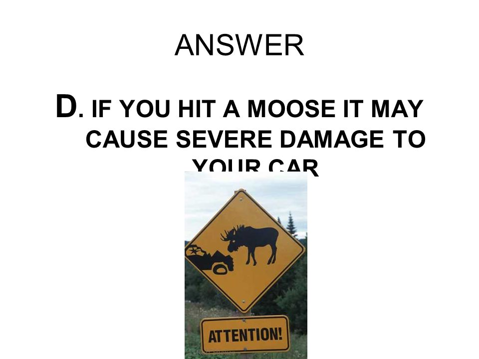 D. IF YOU HIT A MOOSE IT MAY CAUSE SEVERE DAMAGE TO YOUR CAR