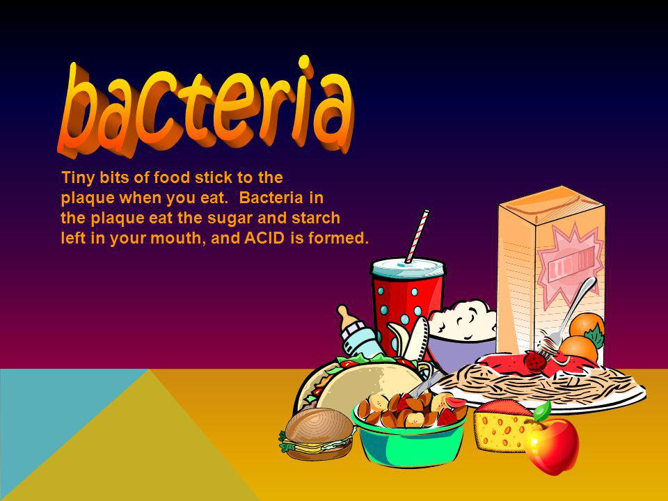 bacteria Tiny bits of food stick to the plaque when you eat. Bacteria in. the plaque eat the sugar and starch.