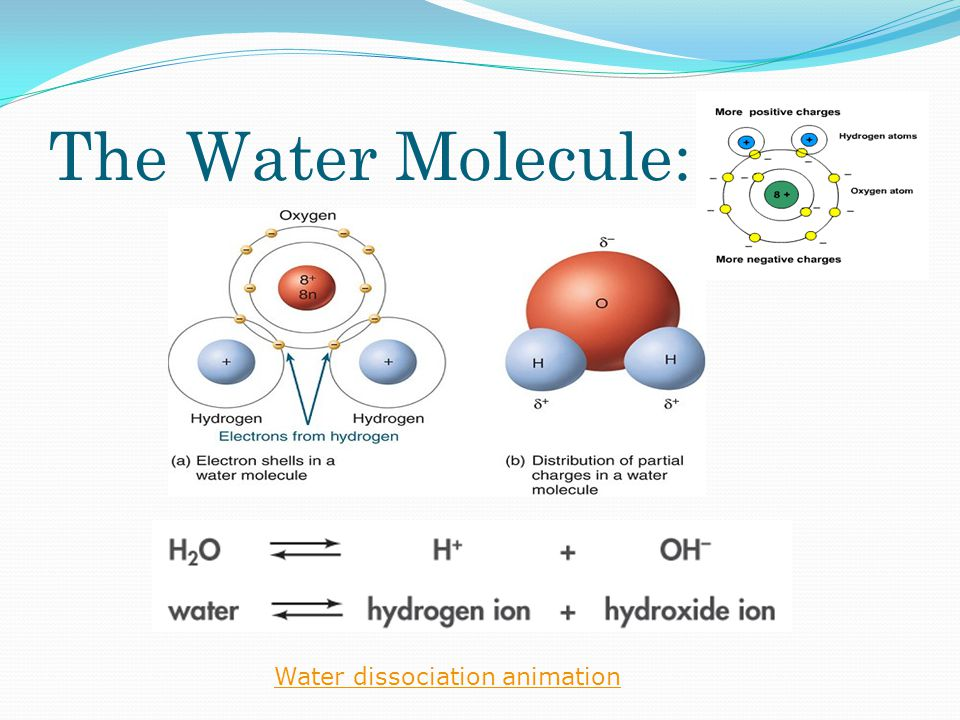 The Water Molecule: Water dissociation animation