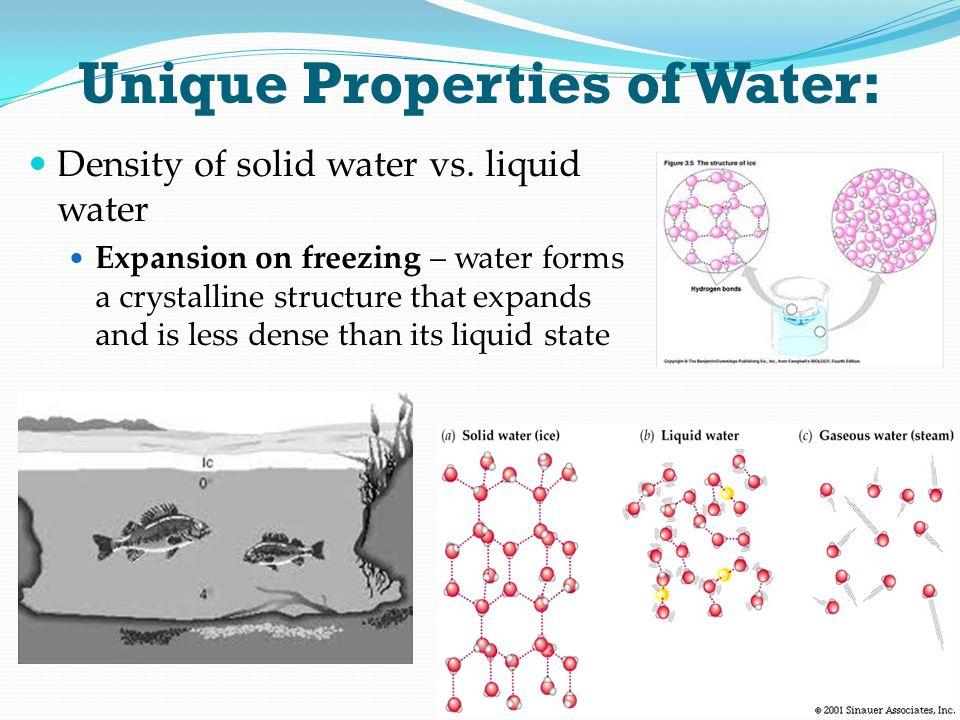 Unique Properties of Water: