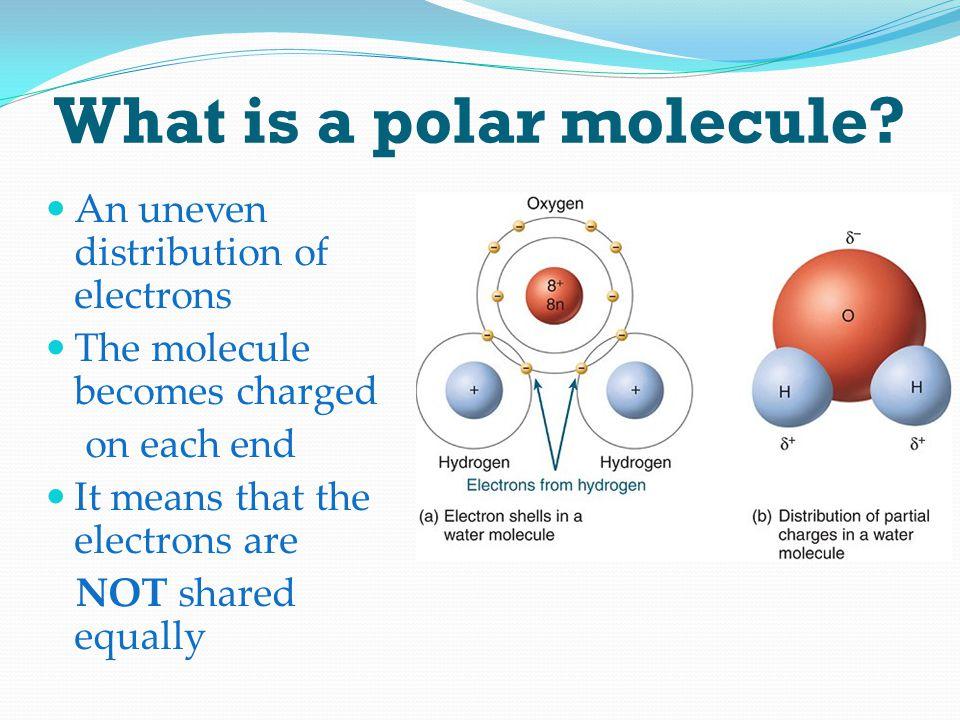 What is a polar molecule