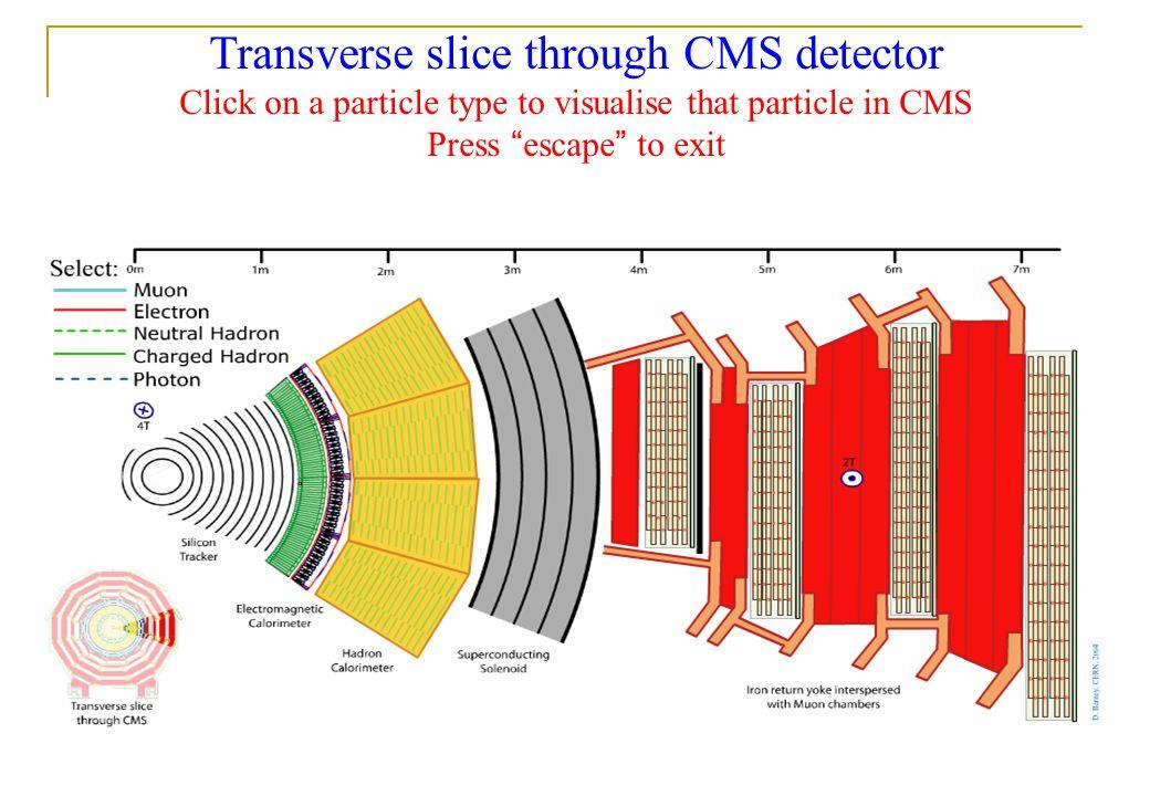 Transverse slice through CMS detector