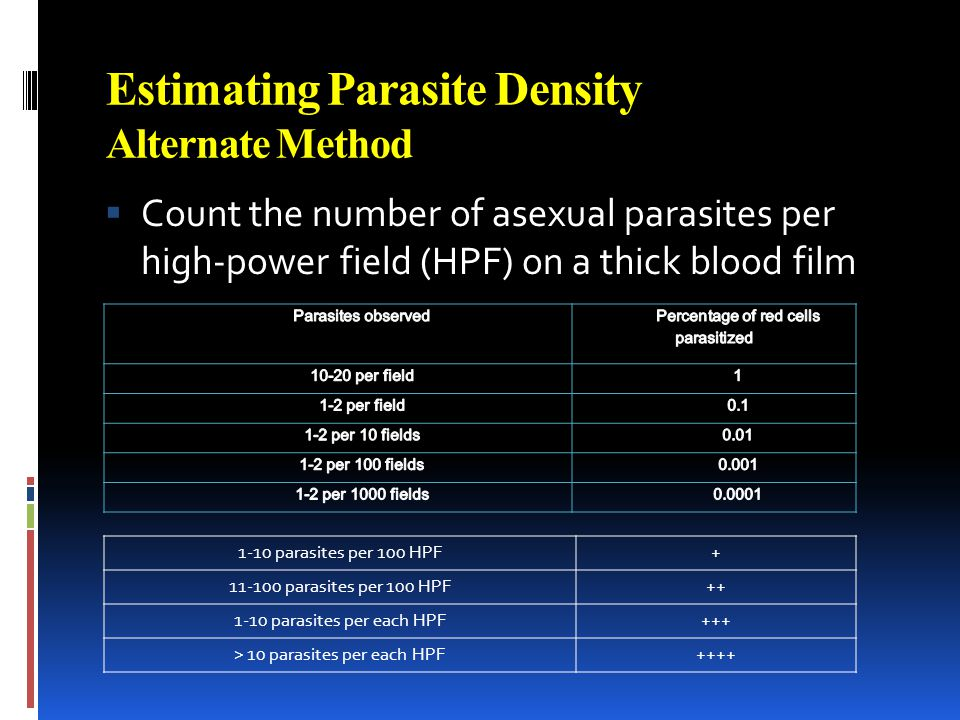 Estimating Parasite Density Alternate Method