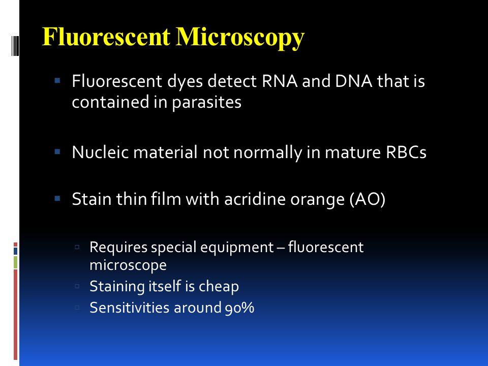 Fluorescent Microscopy