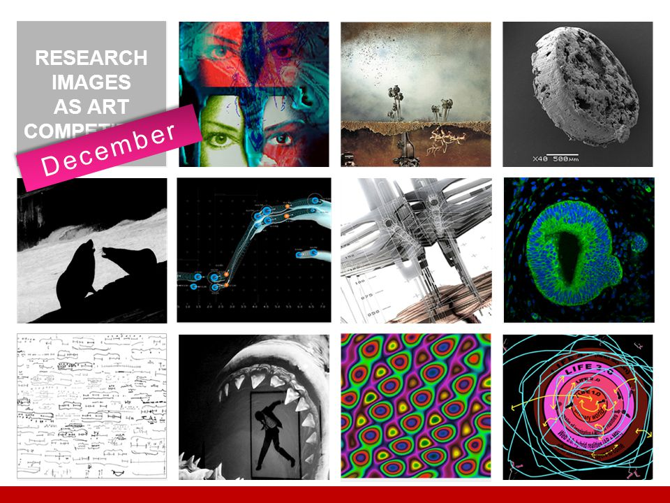 RESEARCH IMAGES AS ART COMPETITION December