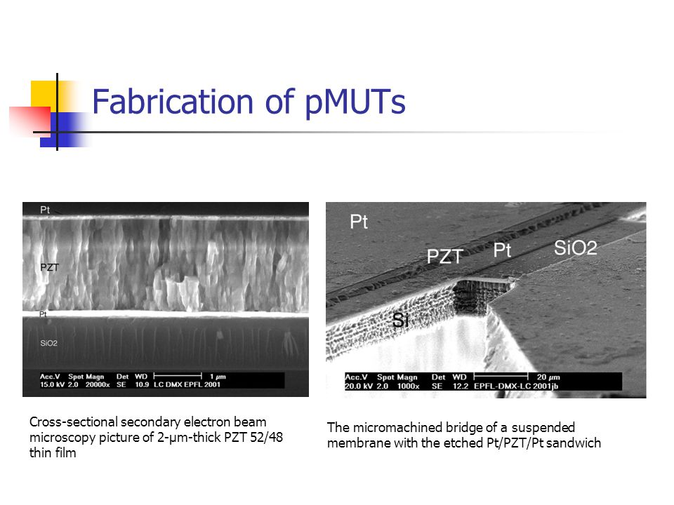Fabrication of pMUTs Cross-sectional secondary electron beam microscopy picture of 2-μm-thick PZT 52/48 thin film.