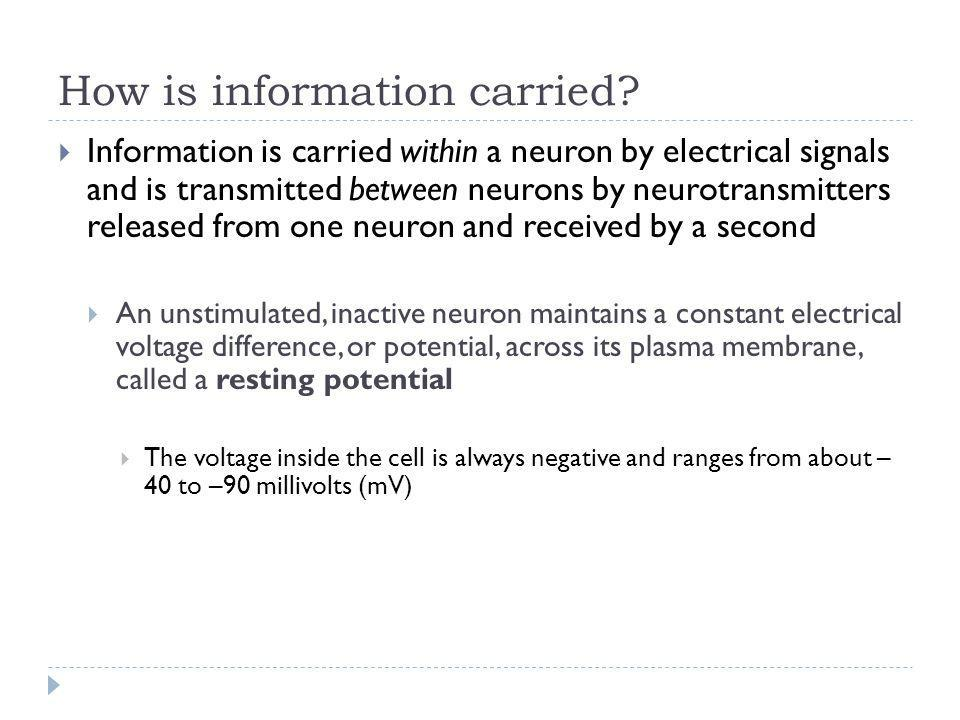 How is information carried