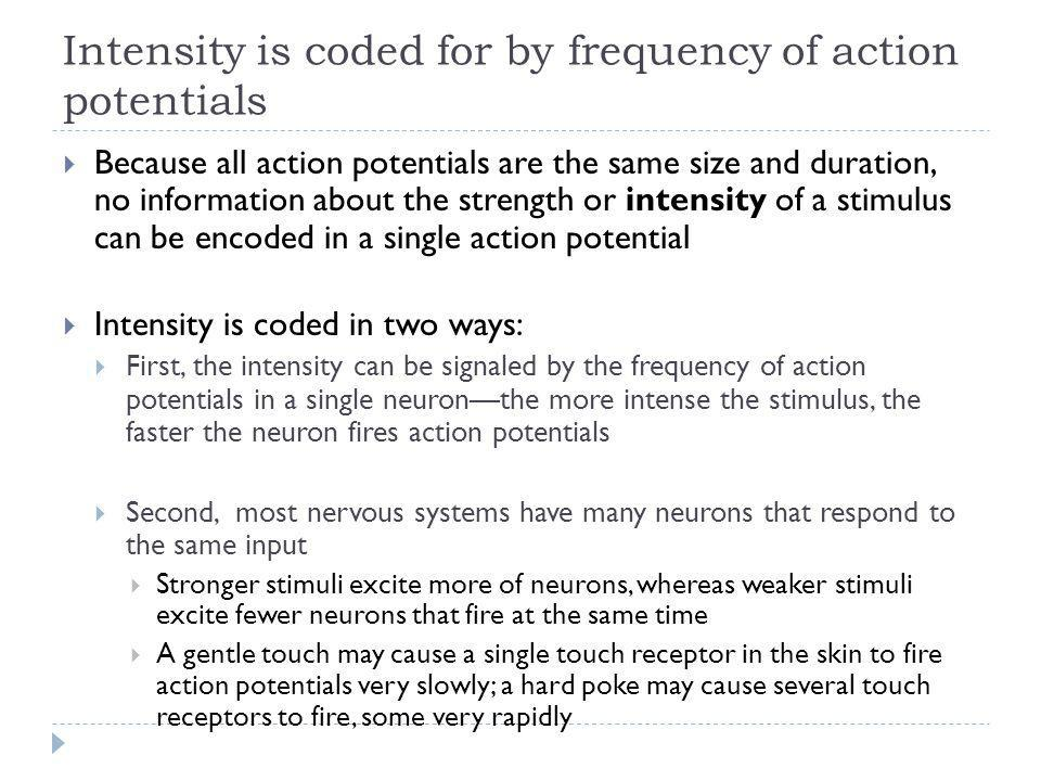Intensity is coded for by frequency of action potentials