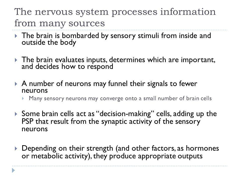 The nervous system processes information from many sources