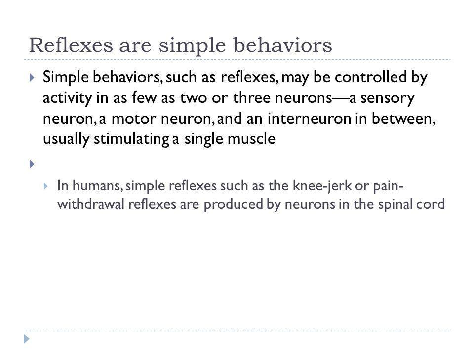 Reflexes are simple behaviors
