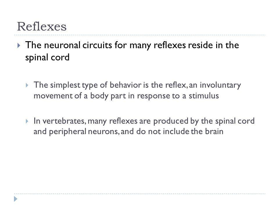 Reflexes The neuronal circuits for many reflexes reside in the spinal cord.