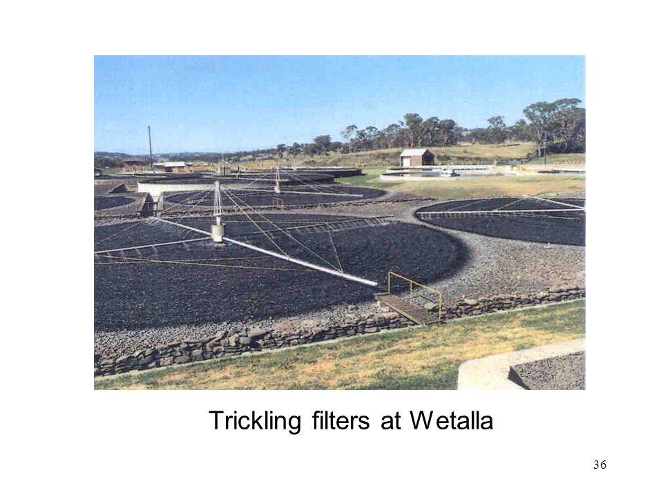 Trickling filters at Wetalla