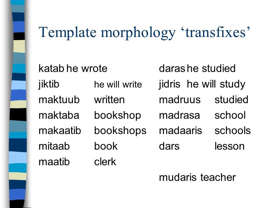 Template morphology 'transfixes'