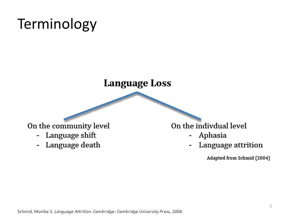 Terminology Schmid, Monika S. Language Attrition. Cambridge: Cambridge University Press, 2004.