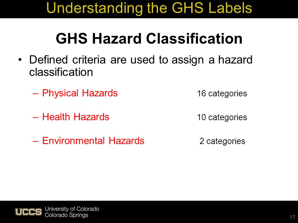 What Are Some Types of Environmental Hazards?