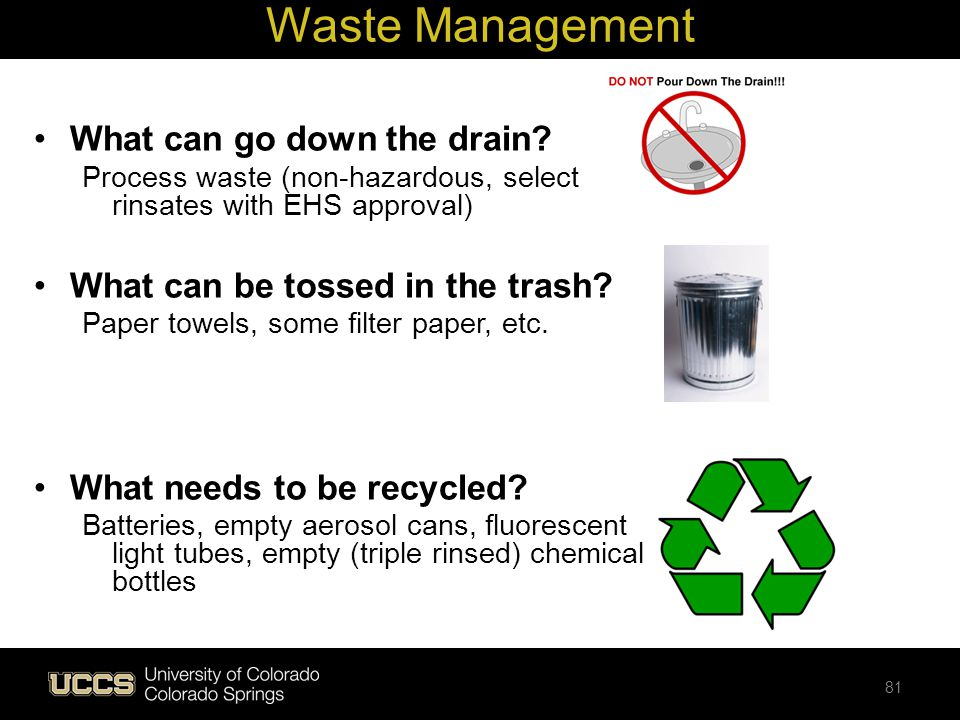 Waste Management What can go down the drain