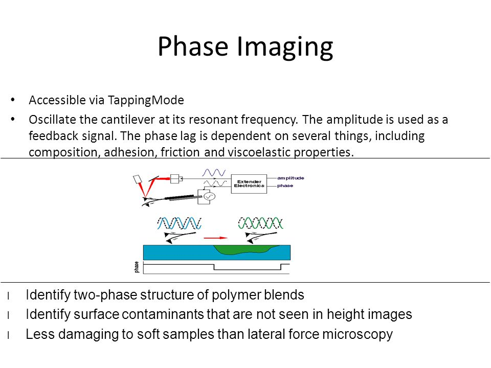 Phase Imaging Accessible via TappingMode