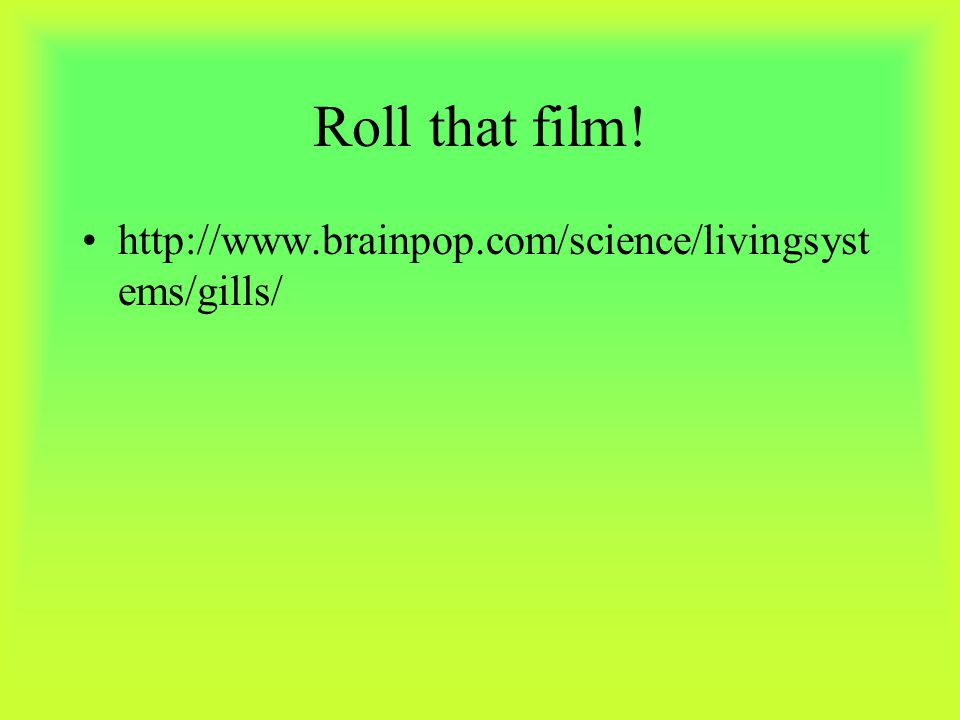 Roll that film! http://www.brainpop.com/science/livingsystems/gills/