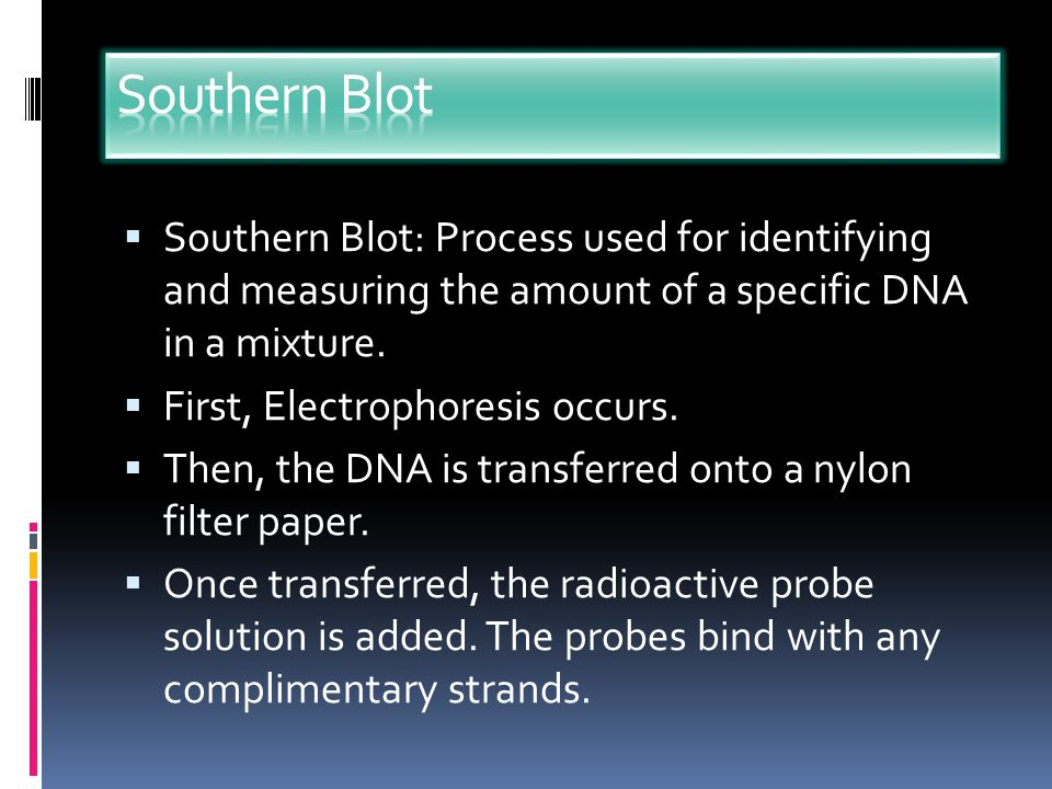 Southern Blot Southern Blot: Process used for identifying and measuring the amount of a specific DNA in a mixture.