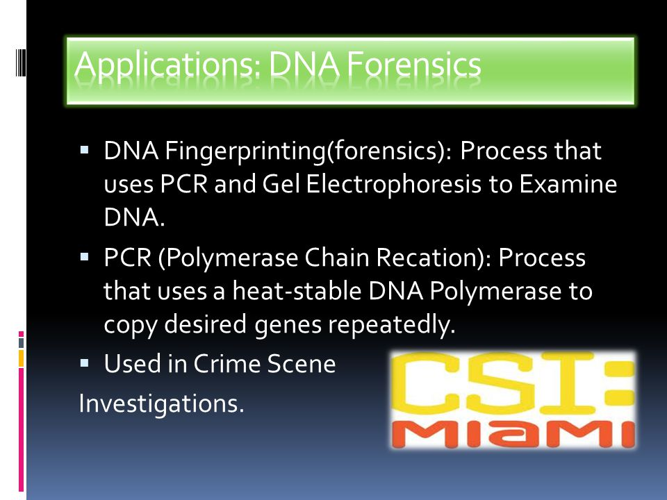 Applications: DNA Forensics
