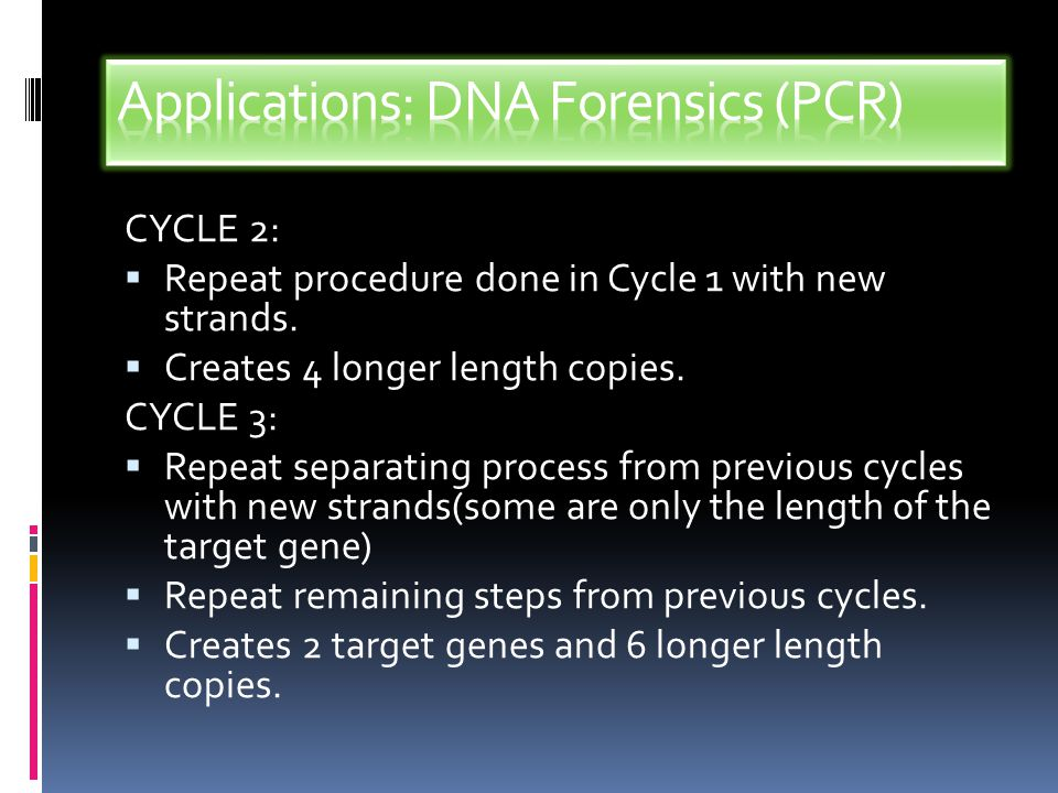 Applications: DNA Forensics (PCR)