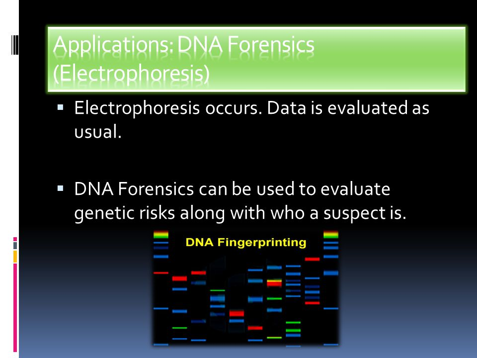 Applications: DNA Forensics (Electrophoresis)