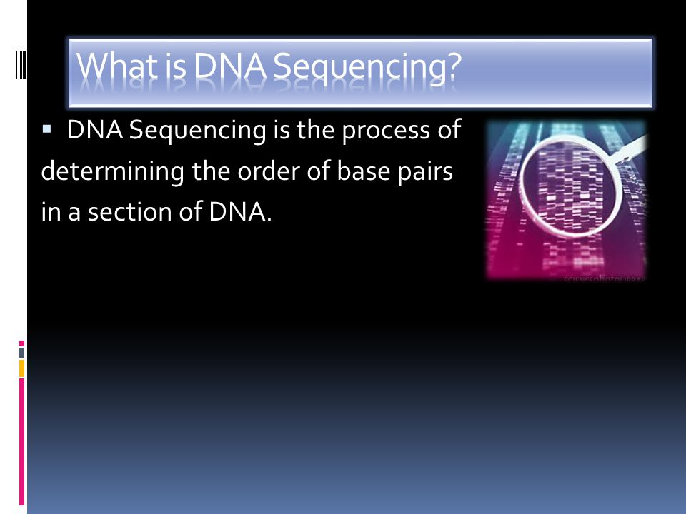 What is DNA Sequencing DNA Sequencing is the process of