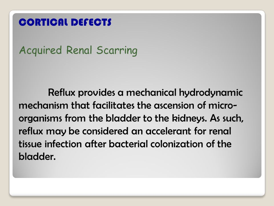 CORTICAL DEFECTS Acquired Renal Scarring Reflux provides a mechanical hydrodynamic mechanism that facilitates the ascension of micro- organisms from the bladder to the kidneys.