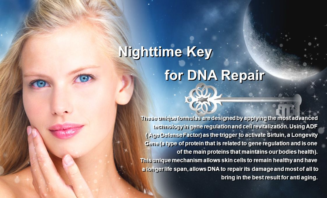Nighttime Key for DNA Repair